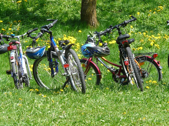 Cycling holidays in South Somerset
